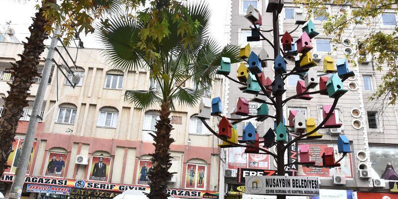 Nusaybin'de parktaki ağaca kuşlar için rengarenk yuvalar