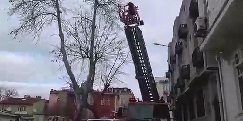 Ağaçta takılı kalan kuşu itfaiye kurtardı