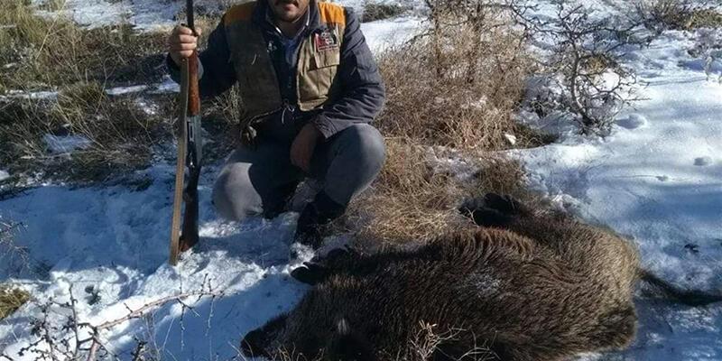 Karaman'da müdürlük organizasyonuyla yaban domuzlarına sürek avı
