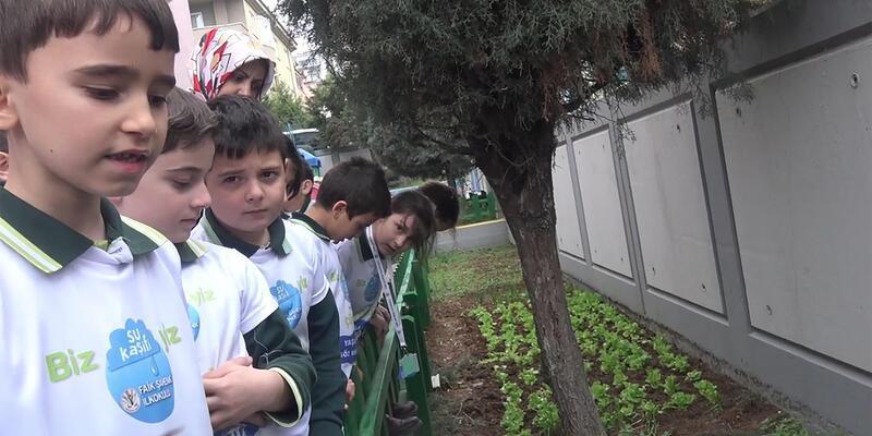 'Su Kaşifi' öğrenciler yağmur sularını toplayıp, sebze yetiştirdi