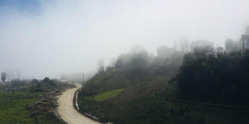 Sinop'ta yoğun sis