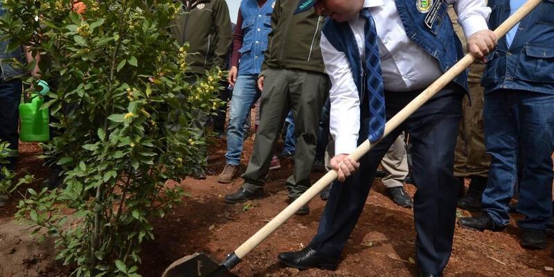 Şehit astsubay için hatıra ormanı oluşturuldu