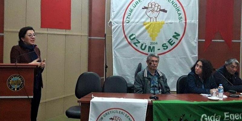 Üzüm üreticilerinin sorunları Komisyon'a iletilecek