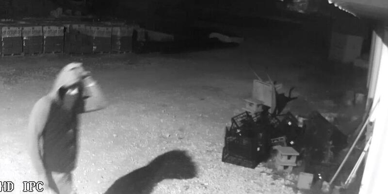 Güvenlik kamerasından yakalanan 2 hırsızlık şüphelisi tutuklandı