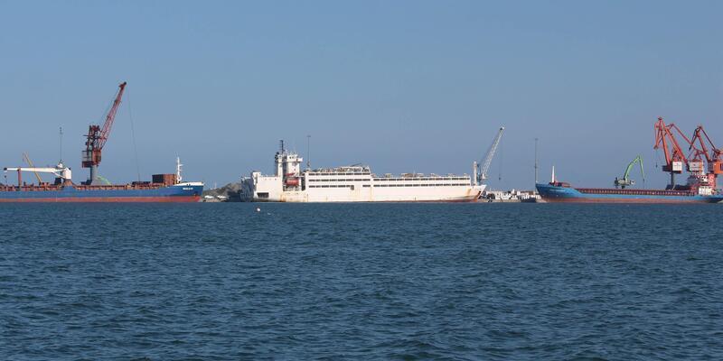 Samsun Limanı'ndan yayılan kötü rahatsız etti