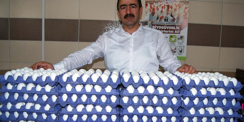 Yumurta ihracatında yeni pazar Afrika