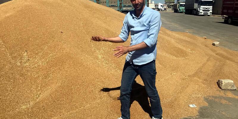 Buğday üreticilerinden, 'TMO'nun anlaştığı firma bizi mağdur ediyor' iddiası