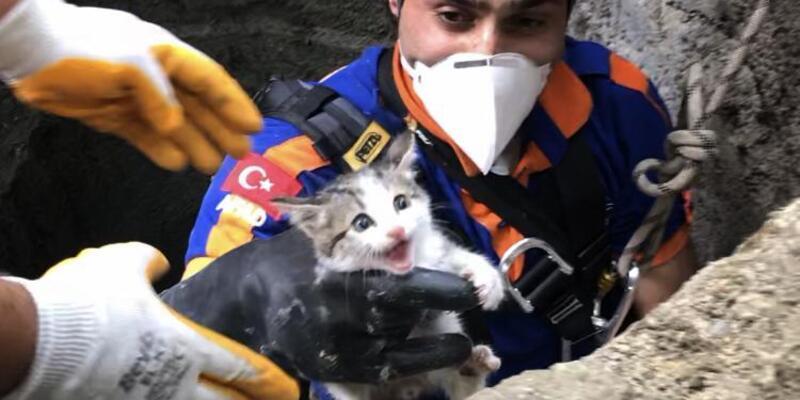 AFAD su kuyusuna düşen yavru kedi için seferber oldu