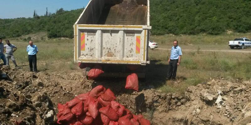 4 bin 125 kilo kaçak midye ele geçirildi