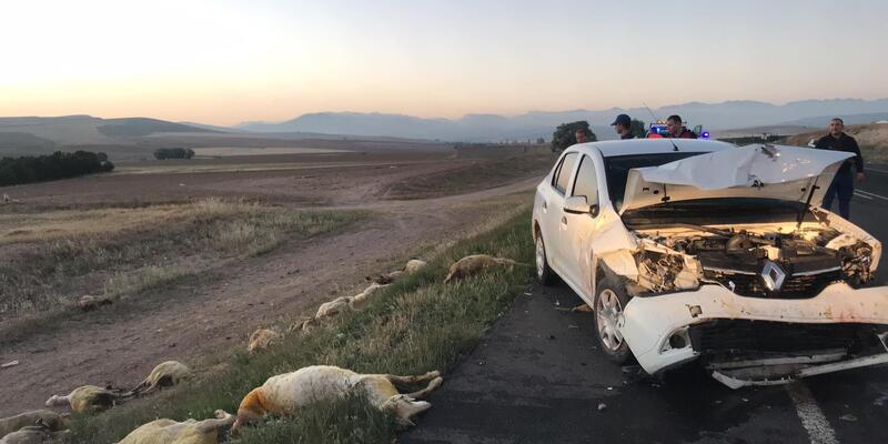 Sürüye çarpan otomobildeki 3 kişi yaralandı, 20 koyun telef oldu
