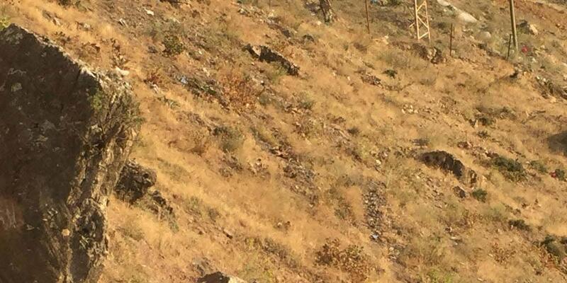 9 köy, kayıp Salih'i arıyor (2)