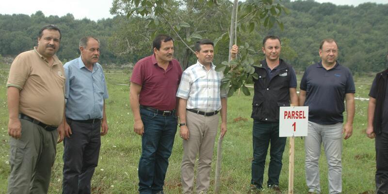 30 yıl önce el koyulan arazi, köylülere ceviz bahçesi olarak verildi