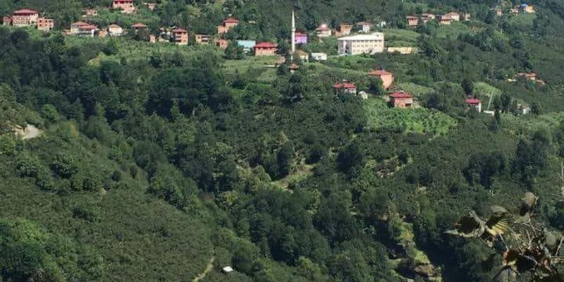 Ordu'da heyelan riskine karşı 16 ev boşaltıldı