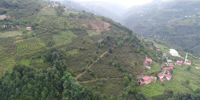 Ordu'da heyelan riski nedeniyle tahliye edilen 18 ev için yıkım kararı