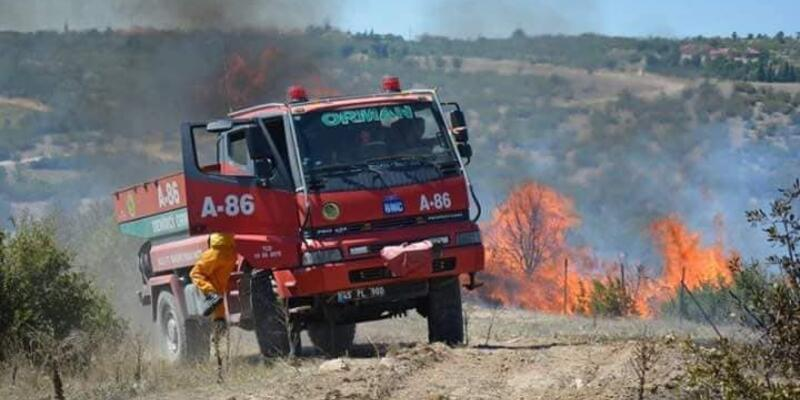 Selendi'de ormanda yangın çıktı, tarım arazileri de yandı