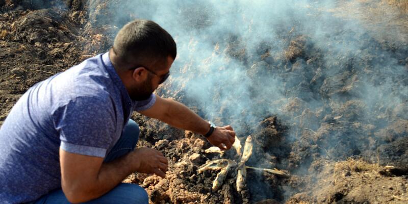 Yanan toprak üzerinde balık pişirdiler