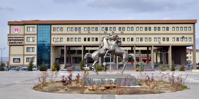 Erciyes Üniversitesi: 'Deneyle köpek katliamı' iddiası gerçek dışı