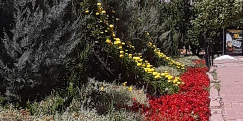 Kavşaklar çiçeklerle süslendi