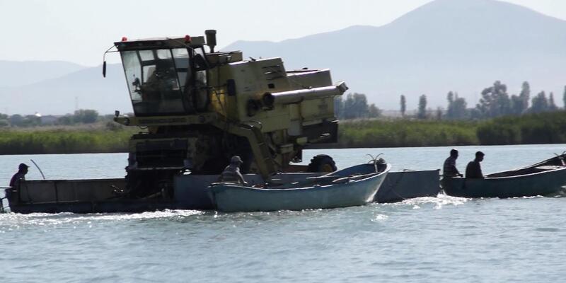Biçerdöver, göl üzerinde taşındı