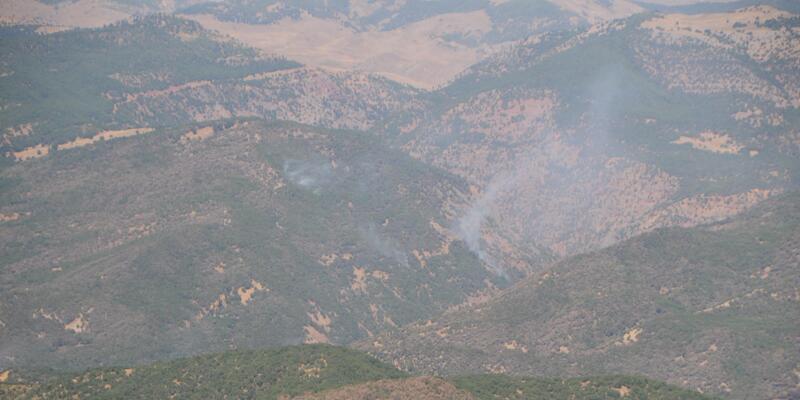 CHP'li Erol: Tunceli Aliboğazı'ndaki orman yangını söndürüldü