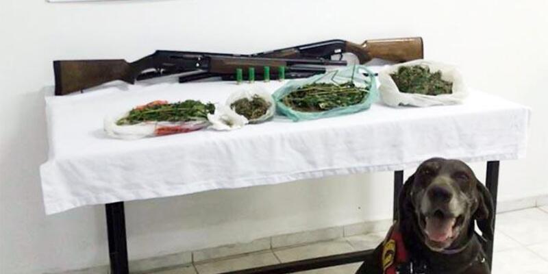 Turgutlu'da 1 kilo 393 gram esrar ele geçirildi