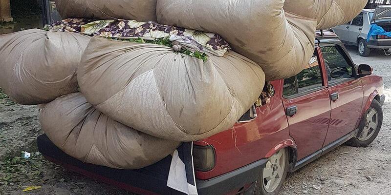 Karadeniz'de ilginç çay taşıma yöntemleri ilgi görüyor