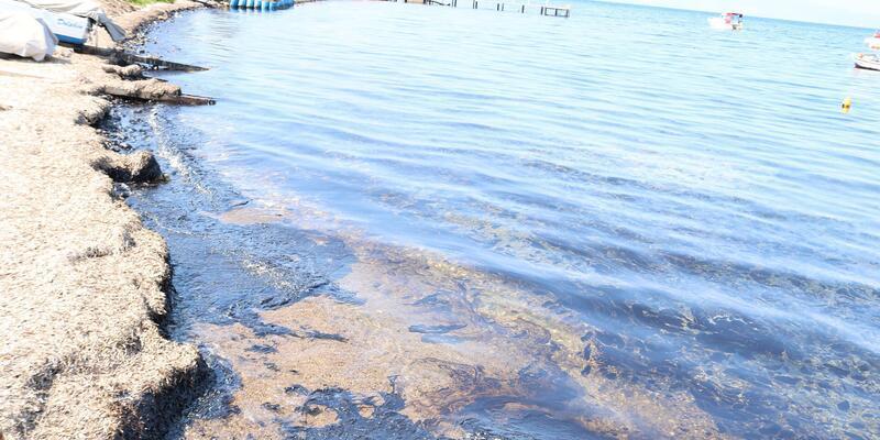 Aliağa ve Foça sahillerinde ham petrol kirliliği (2)
