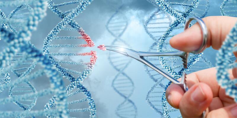 Genetik kodlar İzmir'de çözülüyor