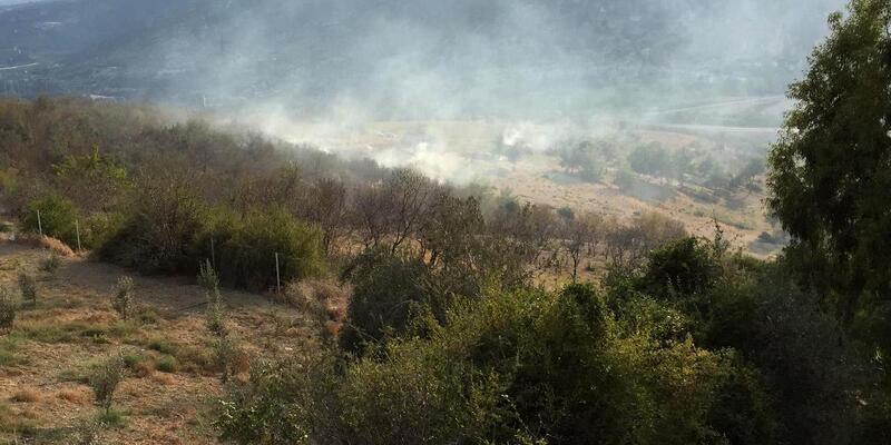Mersin'de ormanlık alanda yangını