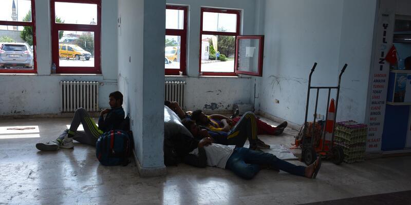Pakistanlı 37 kaçak, İstanbul diye Sinop'a bırakıldı