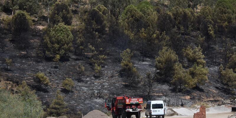 İzmir'deki orman yangınında 15 dekarlık alan zarar gördü