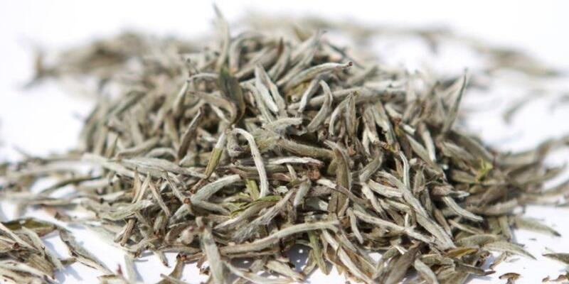 Beyaz çay nasıl demlenir? Beyaz çay nedir? Beyaz çayın faydaları