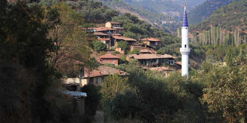 Mahalle sakinleri yayladayken evleri soyuldu