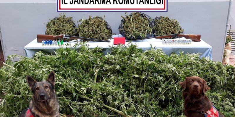 Jandarma'dan uyuşturucu operasyonu: 4 tutuklama
