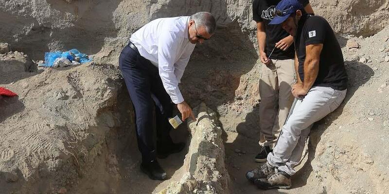 Kayseri'de 7,4 milyon yıllıkfil kafatası bulundu