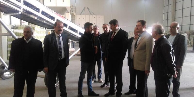 Bitlis'e gelen Genel Müdür ve Yardımcısı, tarımsal faaliyetleri inceledi