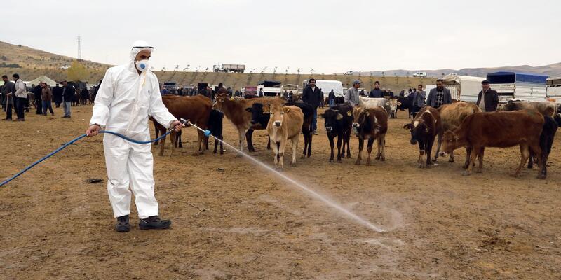 Van'da, salgın hastalıklarına karşı hayvan pazarında ilaçlama yapıldı