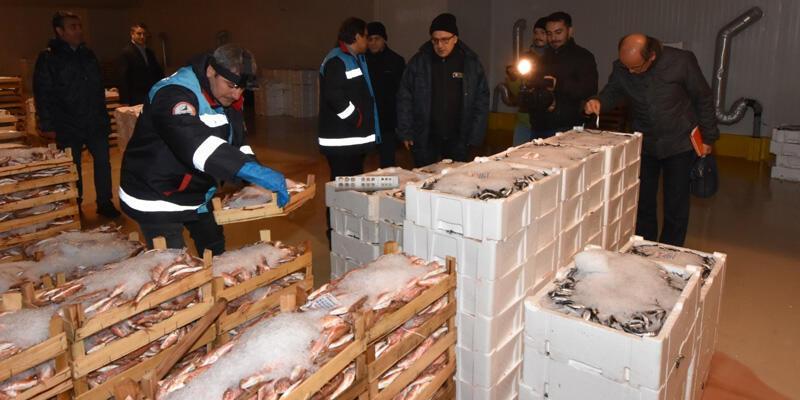 İstanbul'da balıkçılara şok baskın