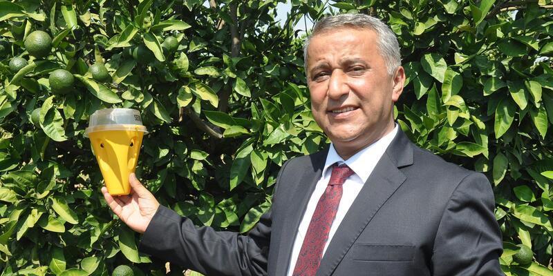 Üreticilere, Akdeniz meyve sineği ile mücadele uyarısı