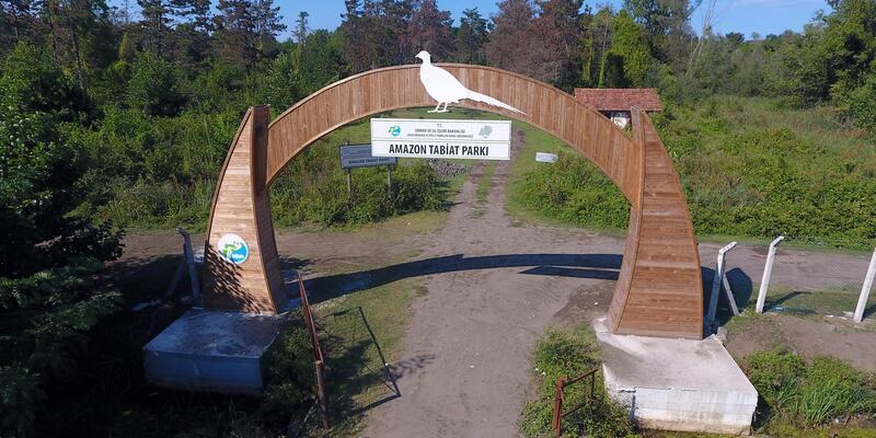 Gölardı, kuş gözlemcilerine açılacak