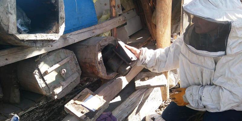 Kütahya'da on binlerce arı telef oldu