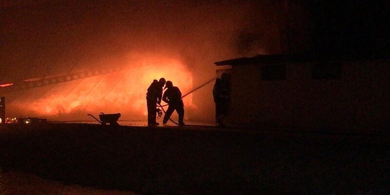 Adana'da narenciye paketleme tesisinde yangın