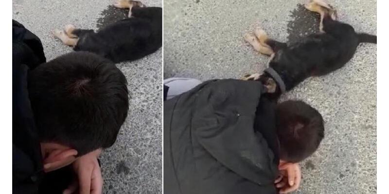 Otomobilin altında kalan köpeğinin başında ağladı