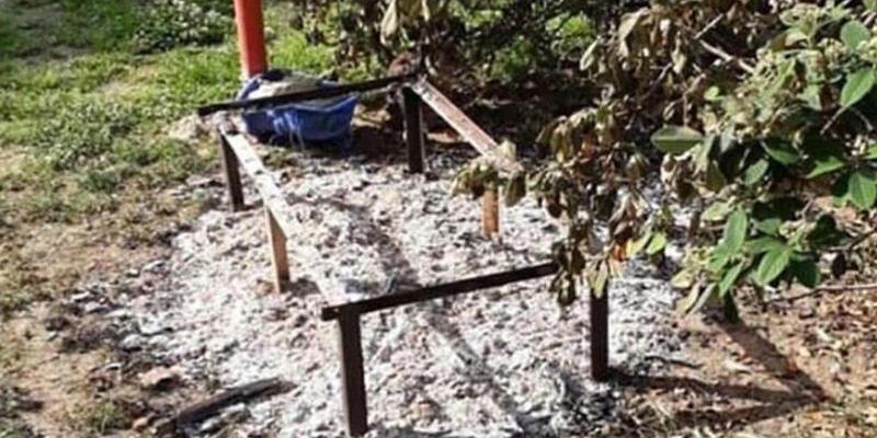 İzmir'de parkta vahşet! Kediyi diri diri yaktılar!