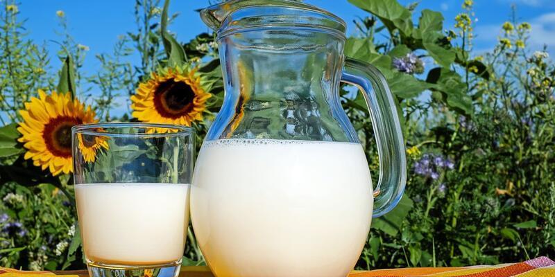 Çiğ süt desteği ödemesi ne zaman yapılacak? Bakan Pakdemirli ödeme tarihini duyurdu!