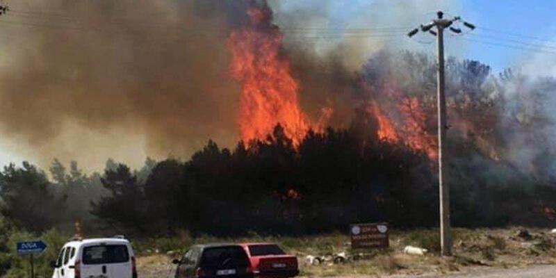 Ayvalık'taki orman yangını tatilcileri korkuttu