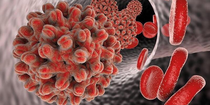 Hepatitte kontrol hayat kurtarıyor