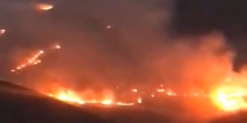 Bayburt'ta orman yangını