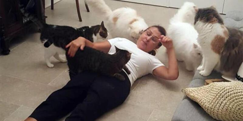 Kedileri ünlü şarkıcıyı böyle karşıladı!