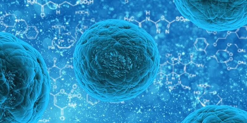 Kök hücre tedavisi ortopedik hastalıklara çözüm oluyor